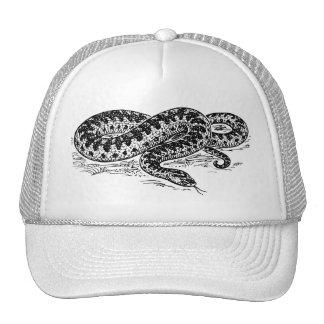 Adder Snake Trucker Hat