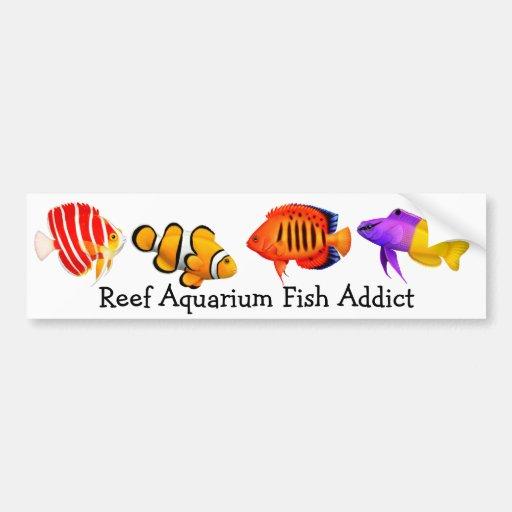 Addicted to Reef Aquarium Fish Bumper Sticker