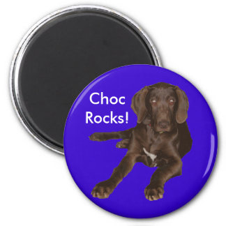 Addiction/Paws Off Magnet