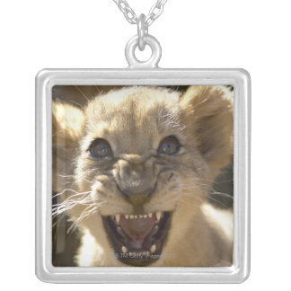 Addo Elephant National Park, Eastern Cape Silver Plated Necklace