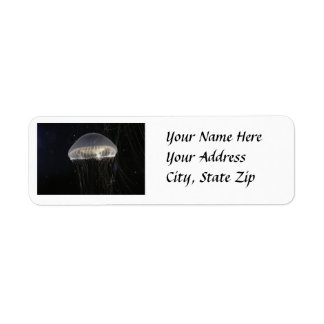 Address Labels: Crystal Jelly Label