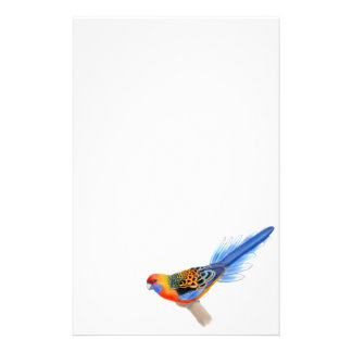 Adelaide Rosella Parrot Stationery