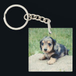 "Adele 6wks Double Photo Keepsake Keychain<br><div class=""desc"">Adele 6wks Double Photo Keepsake</div>"