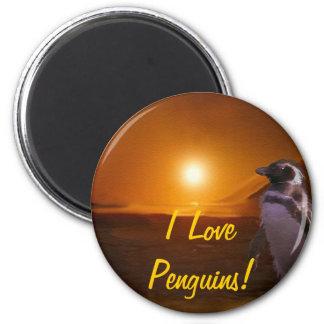 Adelie Penguin & Antarctic Sunset 2 Inch Round Magnet