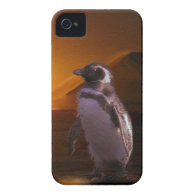 Adelie Penguin & Antarctic Sunset iPhone 4 Covers