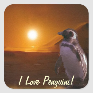 Adelie Penguin & Antarctic Sunset Square Sticker
