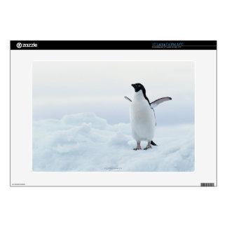 "Adelie penguin, Antarctica Skin For 15"" Laptop"