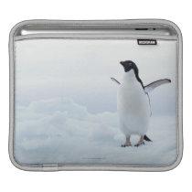 Adelie penguin, Antarctica Sleeve For iPads