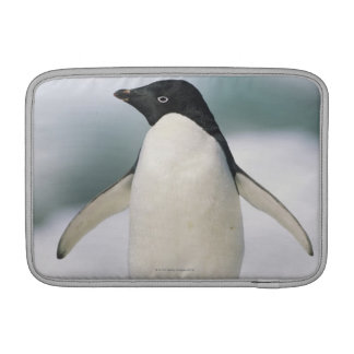 Adelie penguin, close-up MacBook air sleeve