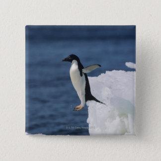 Adelie penguin leaping from iceberg button