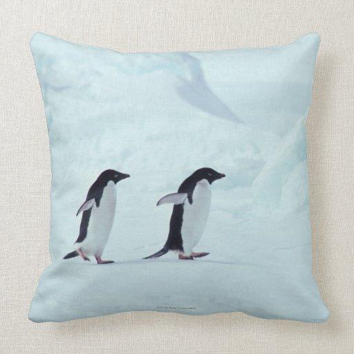 Adelie Penguins, Antarctica Pillow