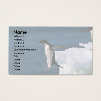 Adelie Penguins Business Card