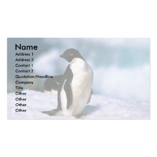 Adelie Penguins Double-Sided Standard Business Cards (Pack Of 100)