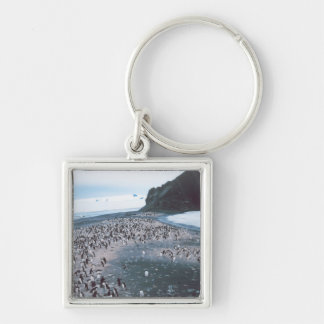 Adelie Penguins Silver-Colored Square Keychain