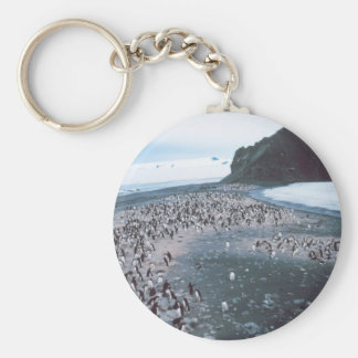 Adelie Penguins Basic Round Button Keychain