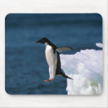 Adelie Penguins Mouse Pads