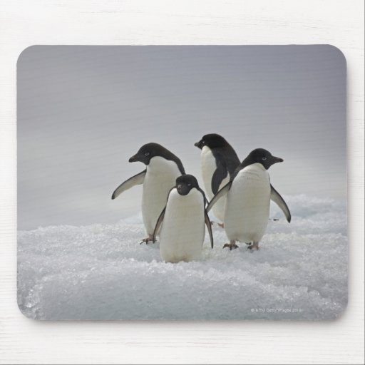 Adelie Penguins on Ice Flows Mousepads