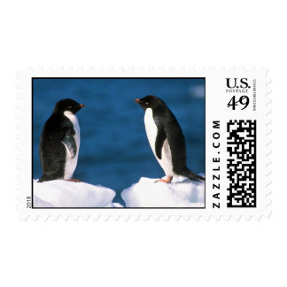 Adelie Penguins Postage Stamps