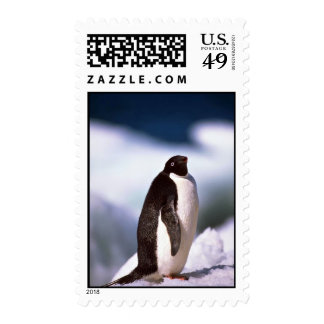 Adelie Penguins Stamp
