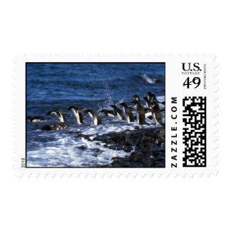 Adelie Penguins Stamps