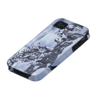 Adelie Penguins Pygoscelis adeliae) among the iPhone 4 Case