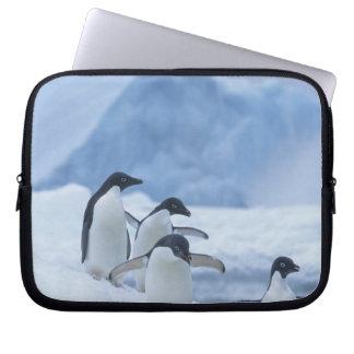 Adelie Penguins (Pygoscelis adeliae) on ice, Laptop Sleeve