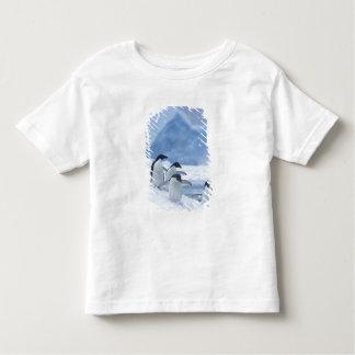 Adelie Penguins (Pygoscelis adeliae) on ice, Tee Shirt