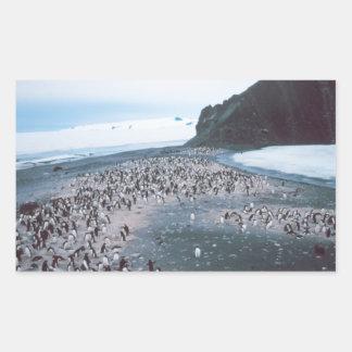Adelie Penguins Rectangular Sticker