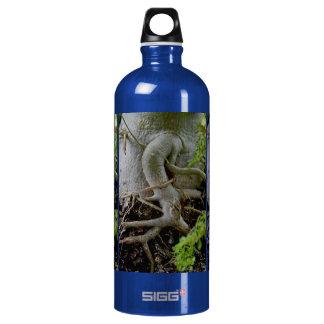 Adenium Gnarled roots of Desert Rose Aluminum Water Bottle