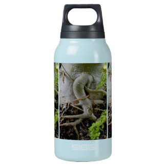 Adenium Gnarled roots of Desert Rose Insulated Water Bottle