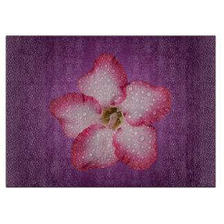 Adenium Pink Flower Flora Gradient Violet Cutting Board