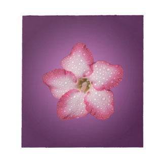 Adenium Pink Flower Flora Gradient Violet Notepad