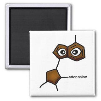 adenosine magnet