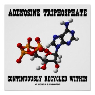 Adenosine Triphosphate Continuously Recycled (ATP) Poster