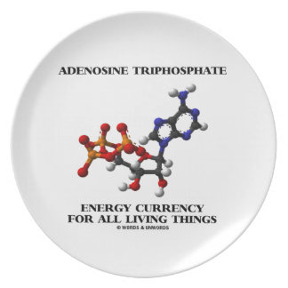 Adenosine Triphosphate Energy Currency For All Plate