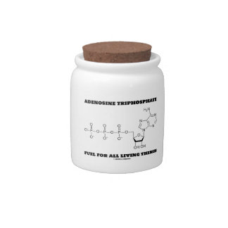 Adenosine Triphosphate Fuel For All Living Things Candy Jars