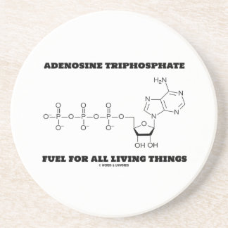 Adenosine Triphosphate Fuel For All Living Things Drink Coaster