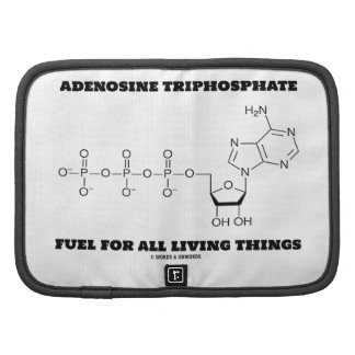 Adenosine Triphosphate Fuel For All Living Things Organizer
