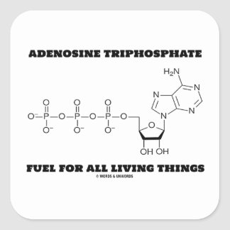 Adenosine Triphosphate Fuel For All Living Things Stickers