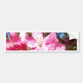 Adentro enfocados flores de Crabapple Pegatina De Parachoque