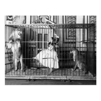 Adgie and Her Trained Circus Lions Vintage Postcard