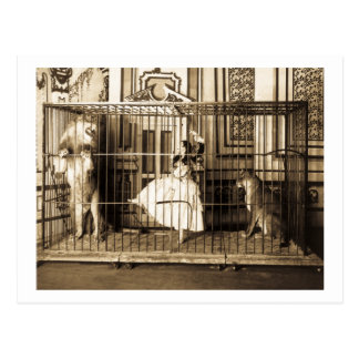 Adgie and Her Trained Lions1897 Postcard