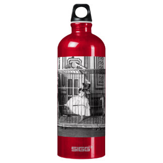 Adgie and Her Trained Lions Vintage Circus 1897 Aluminum Water Bottle