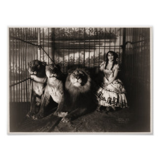 Adgie and The Lions 1899 Poster