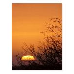 Adiós a otra postal de la puesta del sol del día