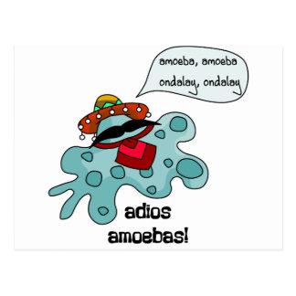 Adios Amoebas Postcard