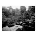 Adirondack Canoe Fishing Postcards