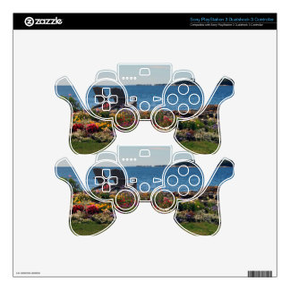 Adirondack Chairs Along the Shore in East Boothbay PS3 Controller Skin