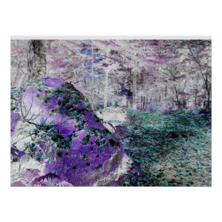 Adirondack Hiking Trail Negative Image Poster