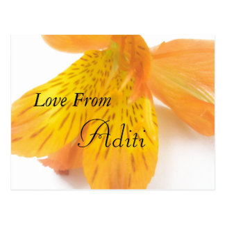 Aditi Girls name gift Postcard